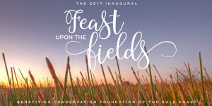 FEAST UPON THE FIELD @ Newly Conserved Triangle Ranch On The Myakka River